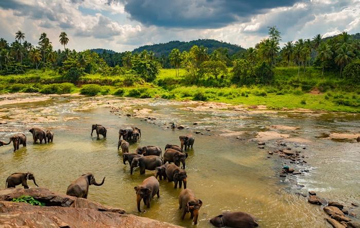 Sri lanka web stranice za upoznavanje